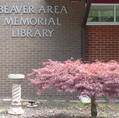 Beaver Area Memorial Library - the place to be!