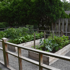 With all the goodies in this garden, we expect to be invited to dinner soon!