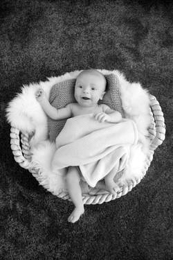 Baby_7