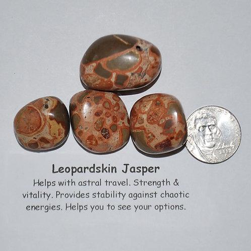 Jasper - Leopardskin