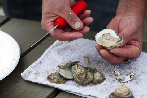 Jolly Oyster advertising; Bob Muschitz photograph