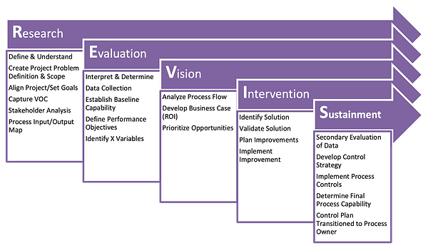 REVIS Methodology.png