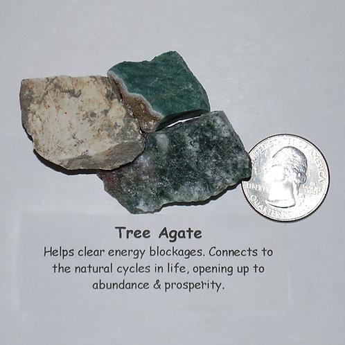 Agate - Tree Rough