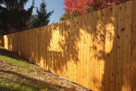 Cedar 6' DE on Steel posts 2.jpg