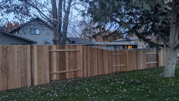 Cedar Good Neighbor style on steel posts