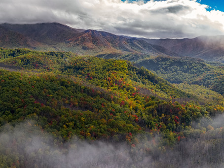 Test Your Knowledge of the Smoky Mountains!