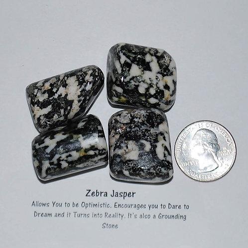 Jasper - Zebra Black/White