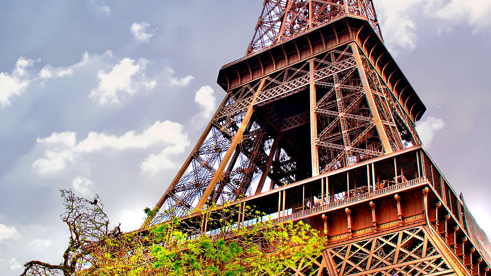 Eiffel Tower Covered In Spring