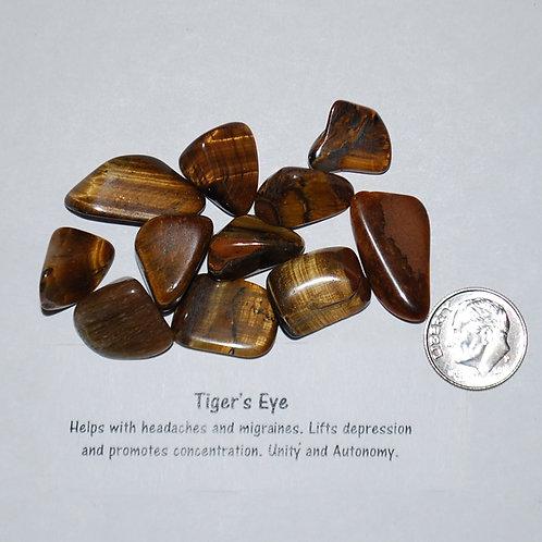 Tiger Eye - Gold - Small