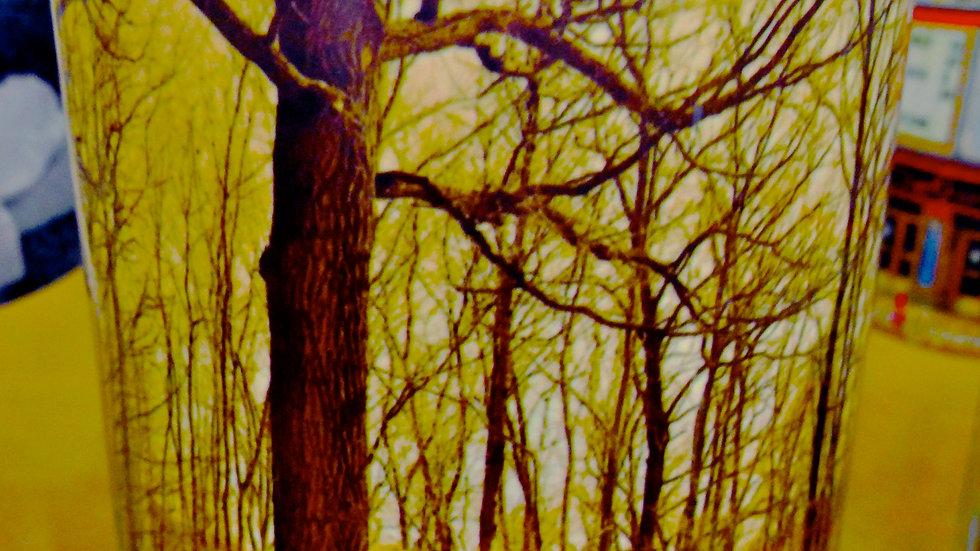 Hidden Forest At Oakland University