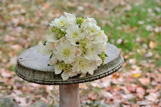 flowers on birdbath.jpg