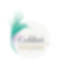 Logo Colibri.png
