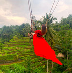 The Bali swing