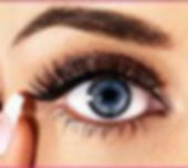 Definition Brows course