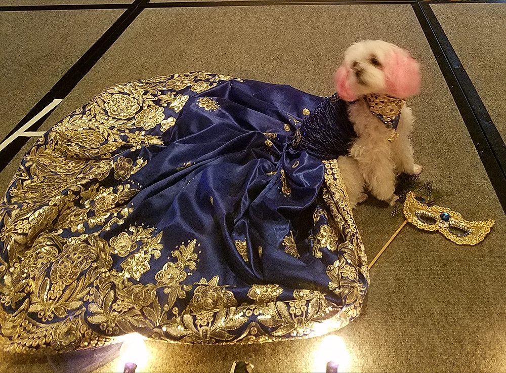 My Belle Diva Couture Gown