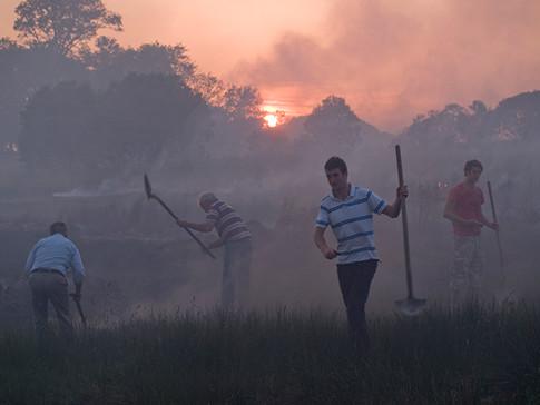 Burning Bog, Ireland