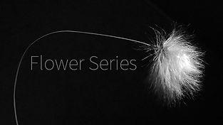 FlowerCover.jpg