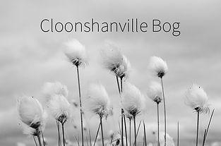 CloonshanvilleCover.jpg
