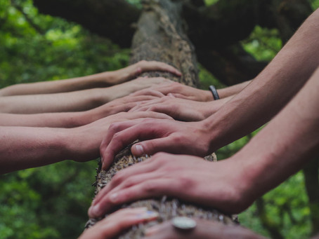 """""""El trabajo en equipo es la capacidad de trabajar juntos hacia una visión común"""" Andrew Carnegie"""