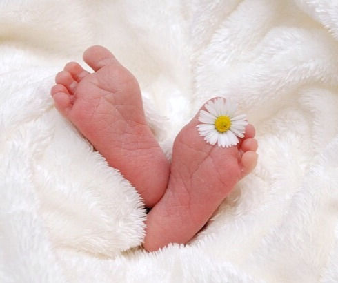 母乳育児相談・乳房ケア