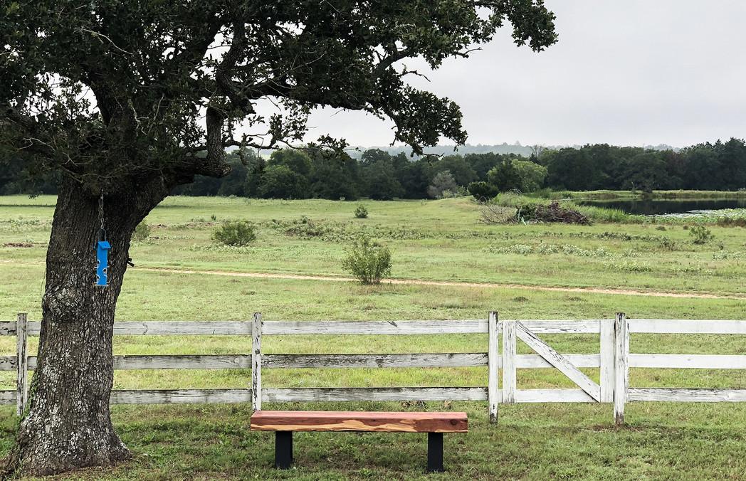 Cedar Slab Bench