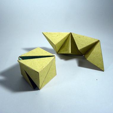 diseccion cubo C7.jpg