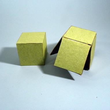 diseccion cubo D1.jpg