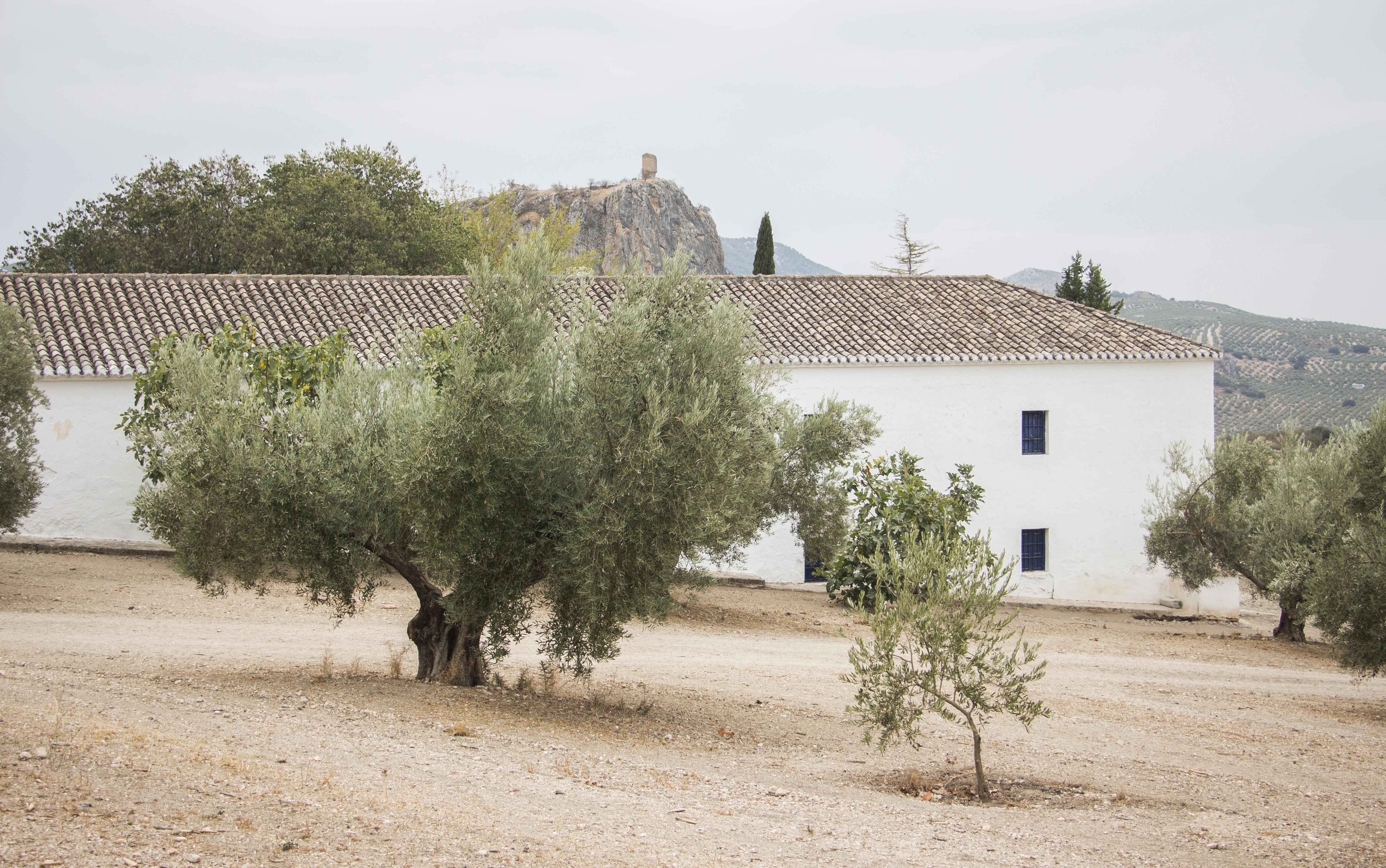 Cortijo - Tozar (Granada)