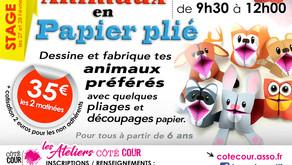 STAGE 04 - ANIMAUX EN PAPIER PLIÉ