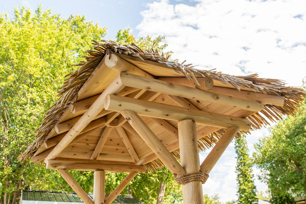 tropical-paradise-roof.jpg