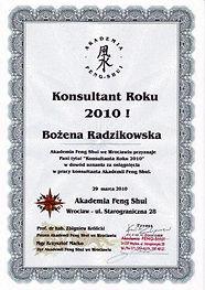 konsultant2010.jpg