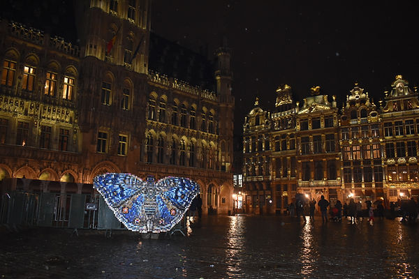 Rhadama papillon Grand Place Bruxelles canettes upcycling art cans