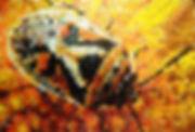 APO'4 : punaise bug eurydema-ornata canettes cans upcycling art