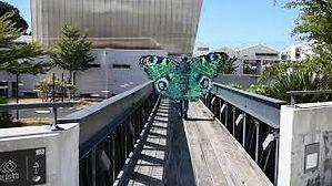 Canbius Papillon-artiste.jpg