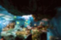 Expo Mer de  Demain déchets bord de mer upcycling art  seaside waste