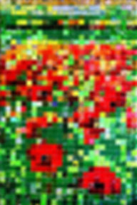 Coquelicots - poppies canettes cans upcycling art