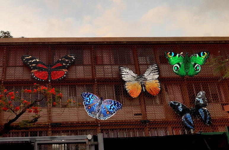 5 butterflies cans - heliconius hecalesia - Cepora judith - forbanta  - Junionia Rhadama - upcycling art cans