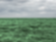 09-2 - Au début la mer était verte - apr