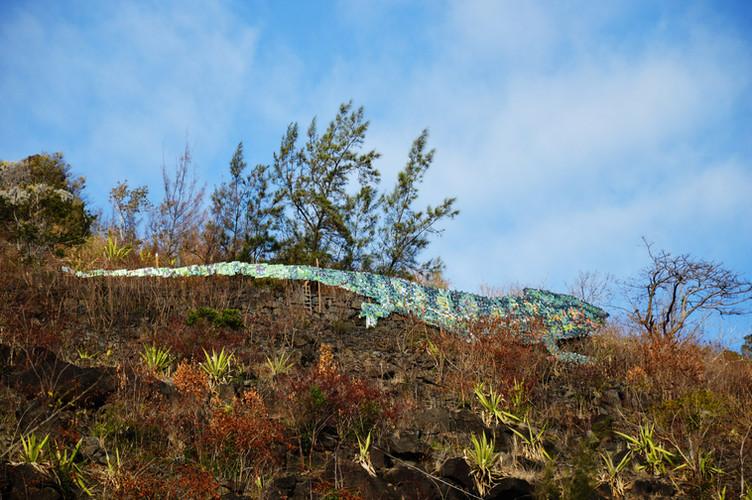 C-Rex - La Montagne_web.jpg