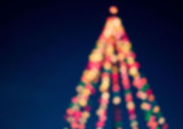 C Tree.jpg