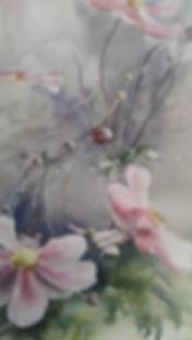 anemone du japon.jpg
