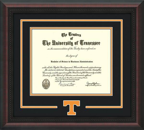 Diploma UT T.jpg