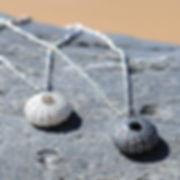 urchins_on_beach_edited.jpg