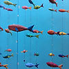 Papier Mache Fish by Sara Drake