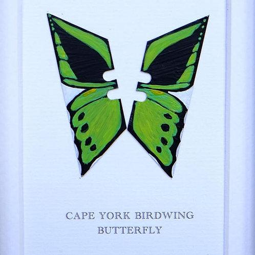 CAPE YORK BIRDWING BUTTERFLY