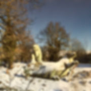 Crystal Palace Park Dinosaur Snow Photo