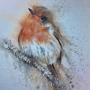 robin_original_watercolour_by_sylvia_far