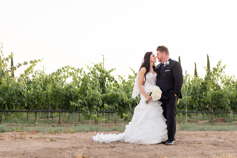Bride and Groom standing in vineyard at sunset at Weins Family Cellars in Temecula, California
