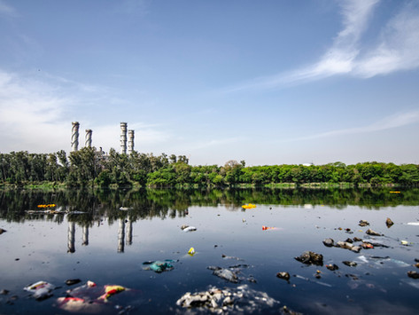 Trash Islands: What They Are and Why They Matter