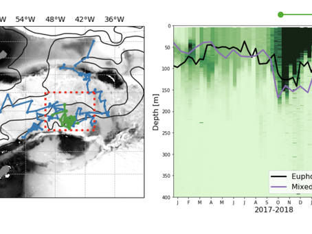 Physical Drivers of Phytoplankton Bloom Initiation in the Southern Ocean's Scotia Sea